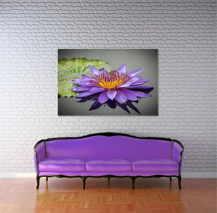 Waterlily Wall Art 30 x 60